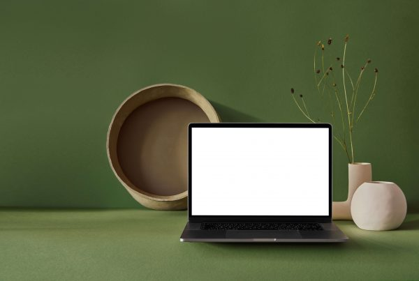 Digital Organization Tips - Laptop with a blank screen against an olive green background with various natural decor items